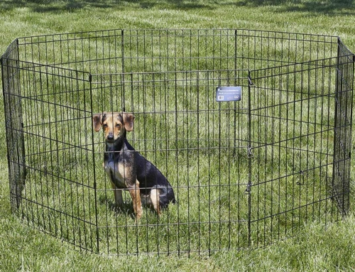 Portable Dog Fence for Large Dogs